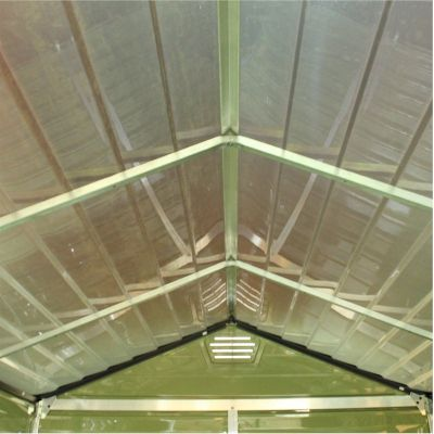 Palram SkyLight Green Plastic Shed 3x6