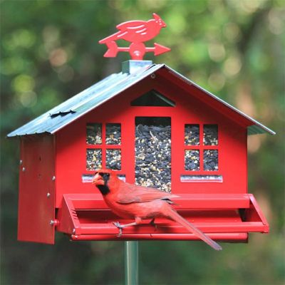 Perky-Pet Squirrel-Be-Gone Red Country Style Bird Feeder
