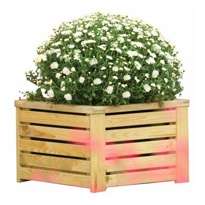 Rowlinson Garden Creations Square Planter